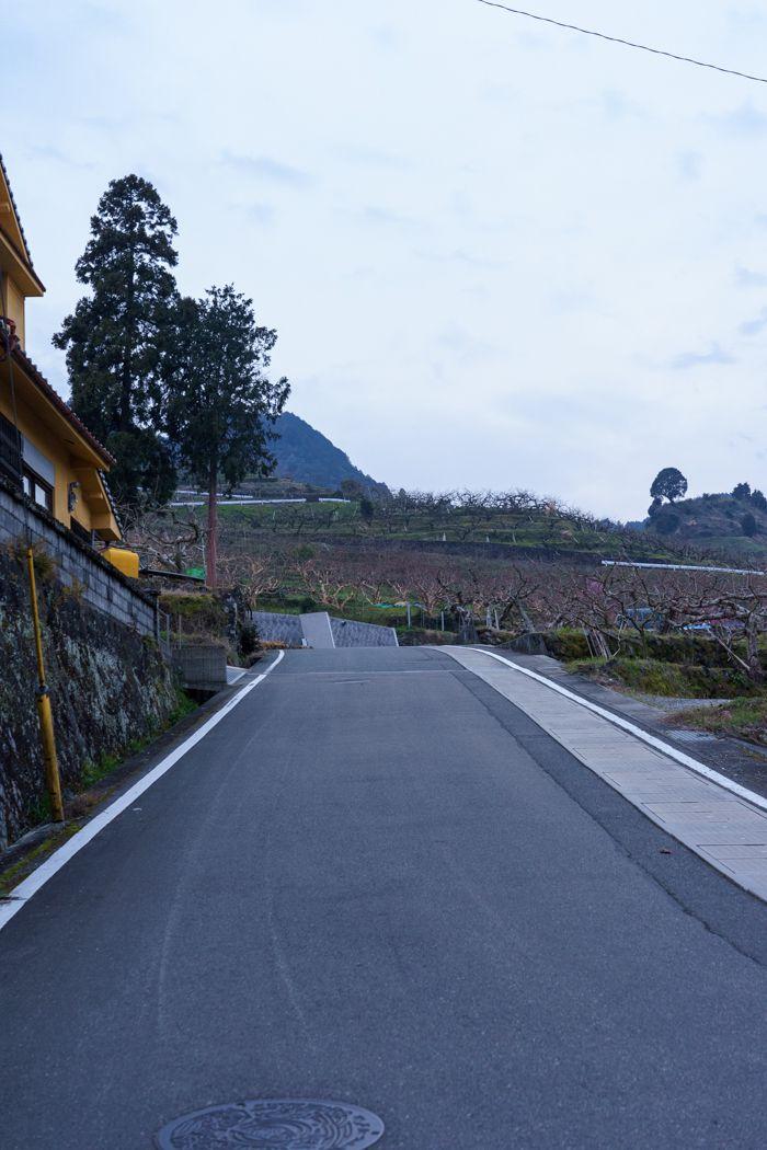 浮羽稲荷神社駐車場までの道路