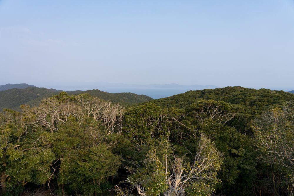 鶴御崎展望台から見た景色